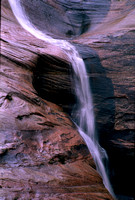 Zion Summer Waterfall