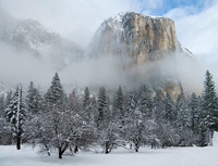 El Capitan Majesty - Yosemite NP